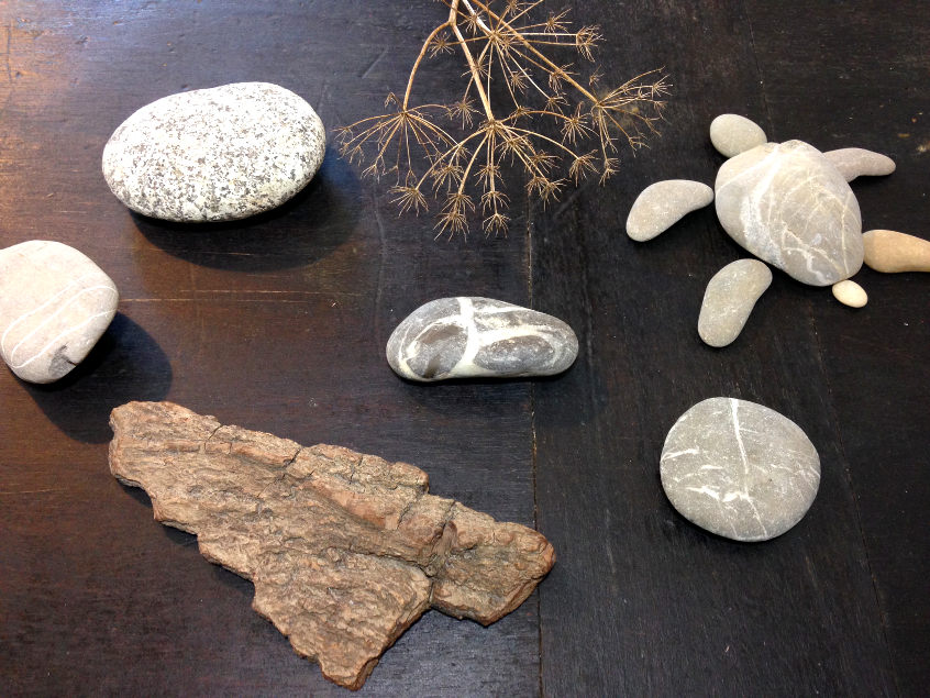 All those treasures given by nature. Perfect for creative DIY projects.