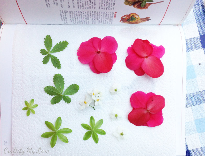 How To Press Flowers With A Book Craftify My Love
