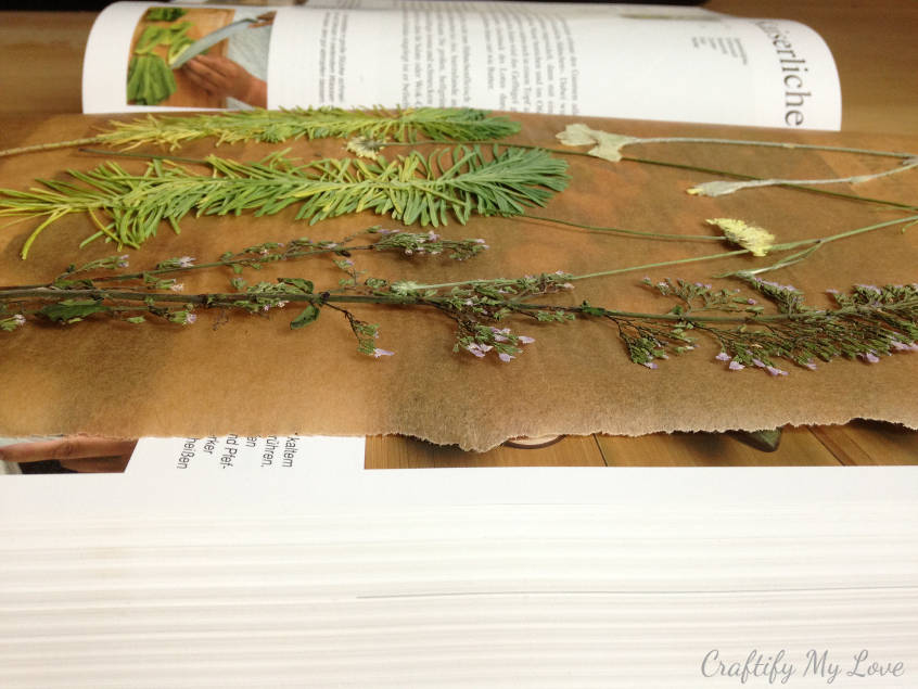 pressed flowers using a book