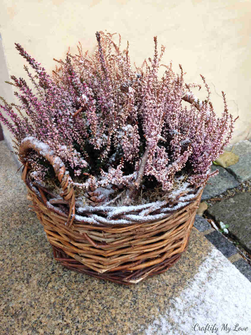 Snow covered heather basket front porch decoration