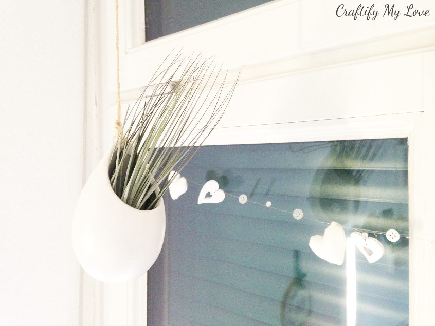 hanging air plant terrarium clay pot container