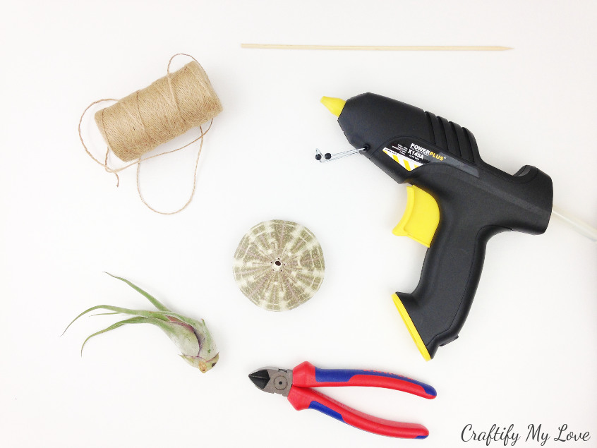 supplies to make a jelly fish diy home decor using sea urchin and air plants