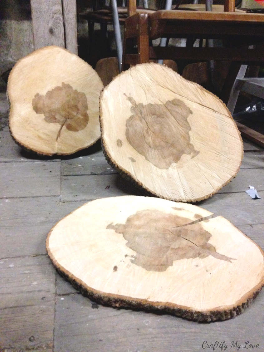 wood slices need to dry slowly in order to not crack or rip before you start your DIY wood working project